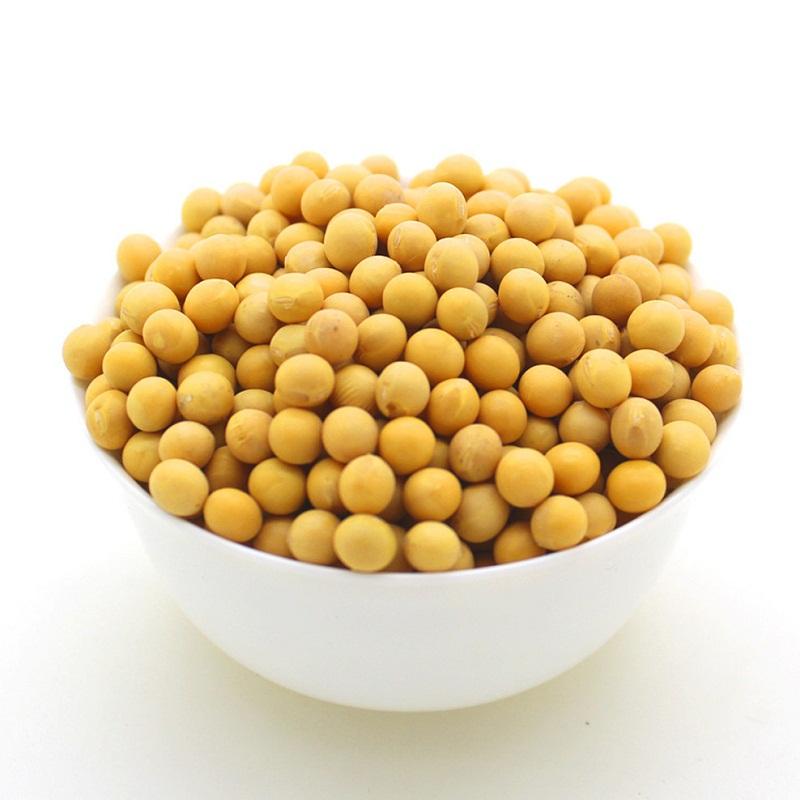 公社有机大豆